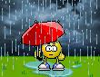 Regn 1
