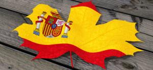 Flagga 3